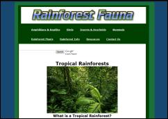 rainforestfauna.com